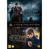 Fantastic Beasts 1 and 2 DVD