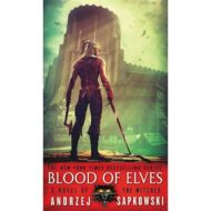 Blood of Elves (Witcher 1)