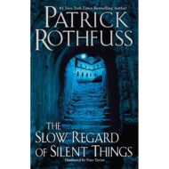 Slow regard of silent things  (Kingkiller Chronicle 2,5 )