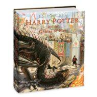 Harry Potter and the Chamber of Secret Illustrated hardcover