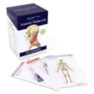 Anatomy Flashcards (3RD ed.)