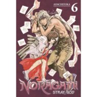 Noragami Stray God Vol 06