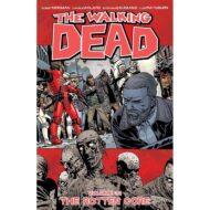 Walking Dead  Vol 31