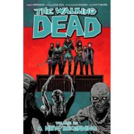 Walking Dead  Vol 22 A New Beginning