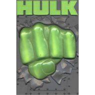 Hulk Limited Edition DVD