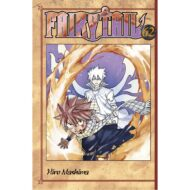 Fairy Tail Vol 62