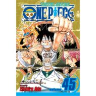 One Piece Vol 45