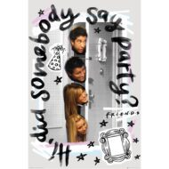 Friends Party – Maxi Poster