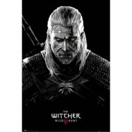 The Witcher Toxicity Poisoning – Maxi Poster