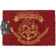 Harry Potter (Welcome To Hogwarts) Doormat