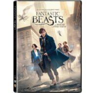 Fantastic Beasts DVD