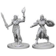 D&D fígurur (Pathfinder) Elf female Fighter