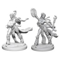 D&D fígurur (Pathfinder) Human Female Sorcerer