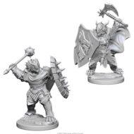 D&D fígurur Dragonborn Male Paladin