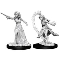 D&D fígurur (Pathfinder) Female Human Wizard
