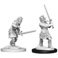 D&D fígurur (Pathfinder) Male Human Barbarian