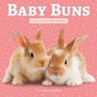 Baby Buns Mini   veggdagatal 2021