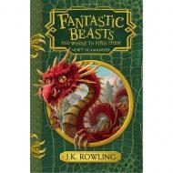 Fantastic Beasts Hogwarts Library