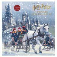 Harry Potter A Hogwarts Christmas  Aðventudagatal