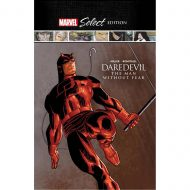 Daredevil  Man Without Fear Marvel Select
