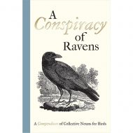 Conspiracy of Ravens, A