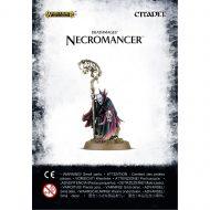 Soulblight Gravelords Necromancer