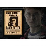 Harry Potter –  Undesirable Plaque