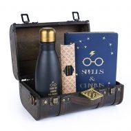 Harry Potter Trouble Finds Me – Premium Gift Set