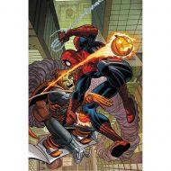 Spider-man By Stern Omnibus
