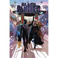 Black Panther  Vol 8  – Intergalactic Empire Wakanda Pt 03