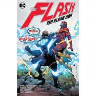Flash Vol 14 The Flash Age