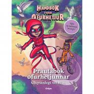 Handbók fyrir ofurhetjur Þrautabók ofurhetjunnar 2